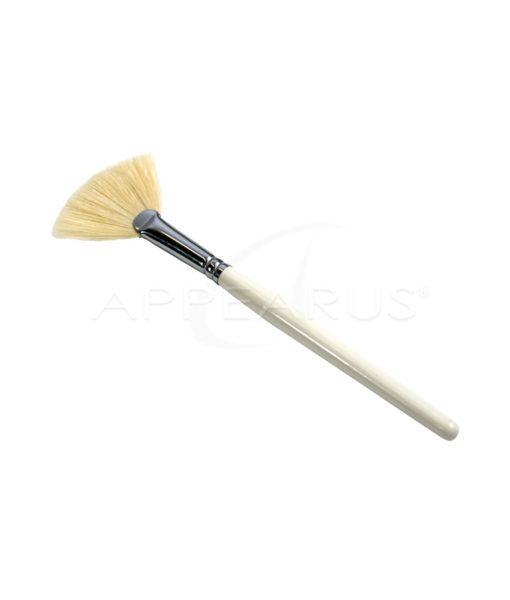 Boar Hair Fan Brush | Appearus