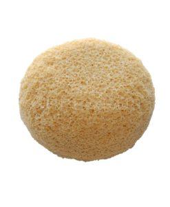 PVA Body Sponge | Appearus